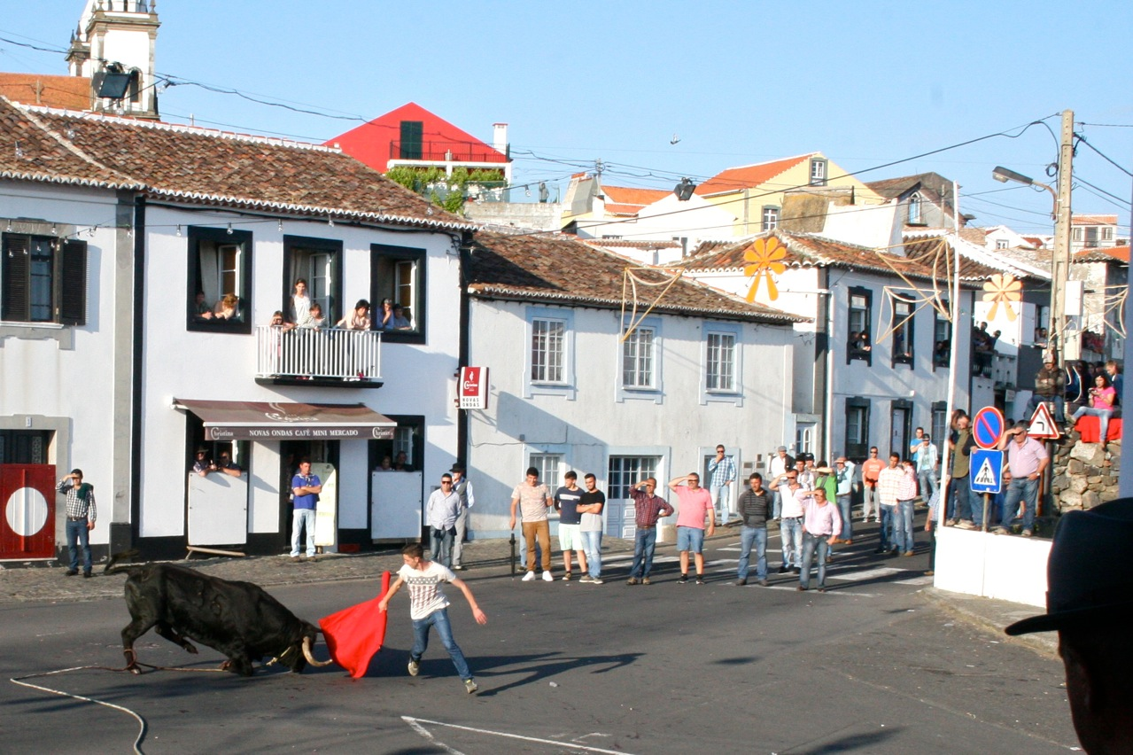 On Terceria they watched the Tourrada a coarda.